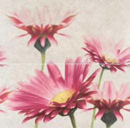 Dekors CREAMY TOUCH COMPOSITION FLOWER  58x59.3cm