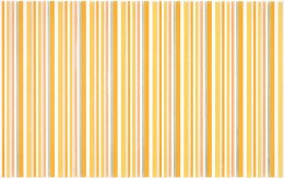 Dekors DIANTUS YELLOW stripe  25x40 cm